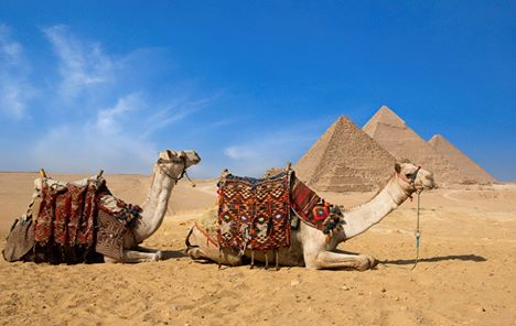 Budget Half day tour to Giza Pyramids and Sphinx in Cairo